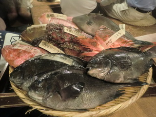 新橋 SL酒場 魚